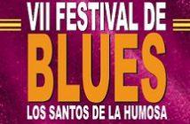 VII-Festival-Blues2